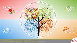 Mevsimler ve ayları anlatan infografik çalışma.