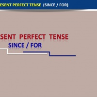 The Present Perfect Tense (Since/For)