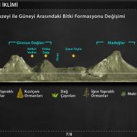 Türkiye'nin İklimi - Doğal Unsurların Göstergesi Bitkiler