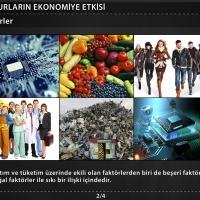 Beşeri Unsurların Ekonomiye Etkisi