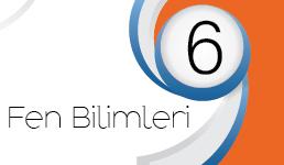 FEN BİLİMLERİ/6. SINIF KAZANIM KAVRAMA TESTLERİ