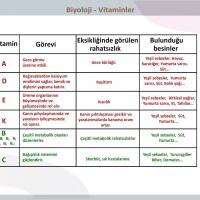 Vitaminler - 1