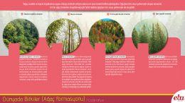 Ağaç formasyonu çeşitleri tanıtılmıştır.
